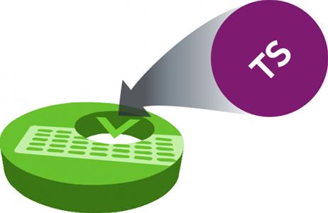 Virtuoso Platform - TS Adaptation and Switching