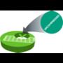 Virtuoso Uncompressed Video over IP Media Function
